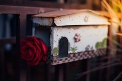 Fleur de rose de rouge dans la boîte aux lettres dans le jour du ` s de Valentine Images stock