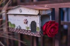 Fleur de rose de rouge dans la boîte aux lettres dans le jour du ` s de Valentine Photographie stock