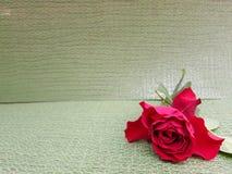 fleur de rose de rouge dans le coin inférieur droit, pour des annonces ou des messages de l'amour, avec le fond vert clair Photos stock