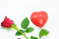 Fleur de rose de rouge et coeur rouge d'isolement sur le blanc Valentine& x27 ; jour de s Images libres de droits