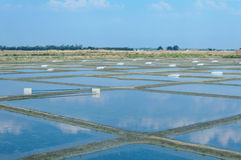 Fleur de Sel Salt Pools. For producing salt royalty free stock photos