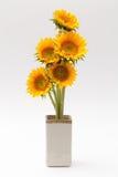 Fleur de Sun Image libre de droits