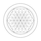Fleur de symbole de durée Illustration sacrée de la géométrie Photo libre de droits