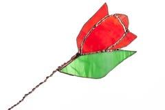 Fleur de tulipe en verre souillé de rouge d'isolement sur le blanc Photographie stock