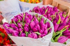 Fleur de tulipe sur le marché Photos stock