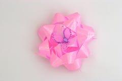 Fleur de vacances Photographie stock libre de droits