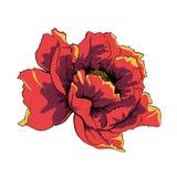 Fleur de vecteur Images stock