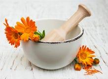 Fleur des officinalis de calendula en mortier images stock