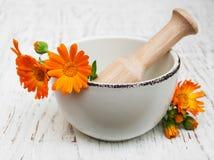 Fleur des officinalis de calendula en mortier photos stock