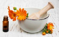 Fleur des officinalis de calendula en mortier image libre de droits