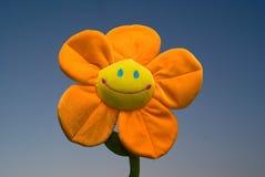 Fleur drôle d'isolement sur le bleu photographie stock