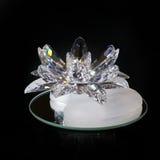 fleur en cristal Images stock