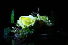 Fleur en gros plan dans le noir Photographie stock libre de droits