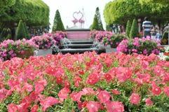 Fleur en monde rêveur Photographie stock