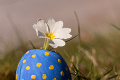 Fleur en oeuf de pâques bleu Photo libre de droits