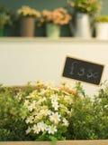 Fleur en plastique avec le conseil des prix dans la boîte en bois Photos libres de droits