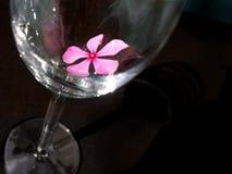 Fleur en verre noire Image libre de droits