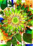 Fleur et abstrait et été et grand dos Image libre de droits