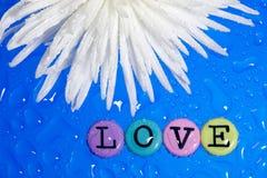 Fleur et amour Photos stock