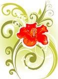 Fleur et courbes rouges illustration libre de droits