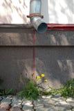 Fleur et drain Photographie stock libre de droits