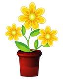 Fleur et flowerpot illustration de vecteur