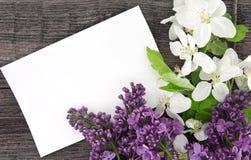 Fleur et lilas de pommier de ressort sur le fond en bois rustique Photographie stock libre de droits