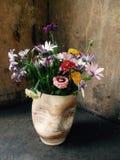 Fleur et moule Image libre de droits