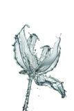 Fleur faite d'eau Image libre de droits