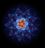 Fleur foncée abstraite Image libre de droits