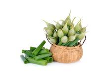 Fleur fraîche d'oignon de ressort dans le panier en bambou et sur le backgro blanc Photo libre de droits