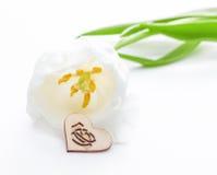 Fleur fraîche de tulipe et coeur décoratif de bois Photos stock