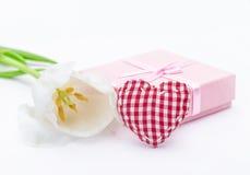 Fleur fraîche de tulipe et textile à carreaux rouge Image libre de droits