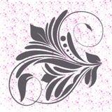 Fleur grise image stock