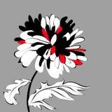 Fleur initiale Images libres de droits