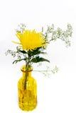 fleur jaune dans le vase en verre jaune avec le backgrou blanc d'isolement Images libres de droits