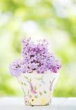 Fleur lilas Photographie stock libre de droits