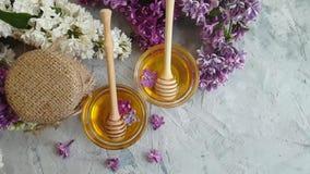 Fleur lilas douce de miel frais le ressort concret de fond banque de vidéos