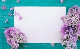 Fleur lilas sur le fond en bois rustique de turquoise avec c vide Images stock