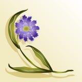 Fleur lilas sur un fond jaune, Images stock