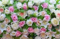 Fleur mélangée Images libres de droits