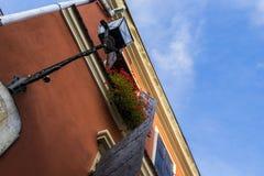 Fleur, mur, ciel, brun, volets Images libres de droits