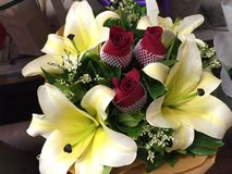 Fleur naturelle de beauté à Bangkok Photos stock