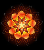 Fleur orange abstraite Photo libre de droits