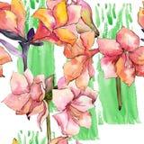 Fleur orange d'amaryllis d'aquarelle Modèle sans couture de fond Illustration Stock