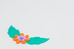 Fleur orange de métier de mousse avec la feuille verte sur le fond blanc et le foyer sélectif Image stock