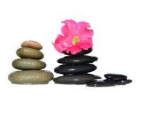 Fleur, pierre Photographie stock libre de droits