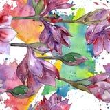 Fleur pourpre d'amaryllis d'aquarelle Fleur botanique florale Modèle sans couture de fond Illustration Libre de Droits