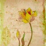Fleur romantique Image stock
