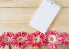Fleur rose 10 Images libres de droits